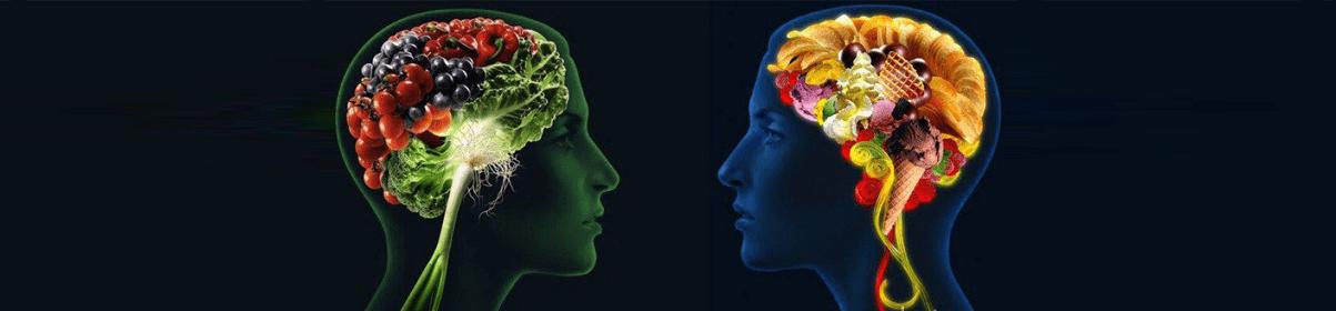 Как устроен мозг и что важно для его здоровья